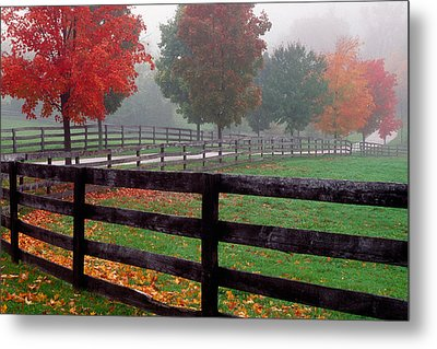 Fenceline And Wet Road, Autumn Color Metal Print by Panoramic Images