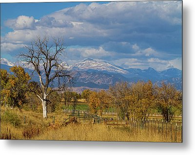 Fences Metal Print by James BO Insogna