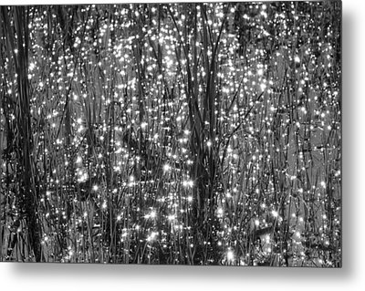 Festival Of Lights Metal Print by YT Photo
