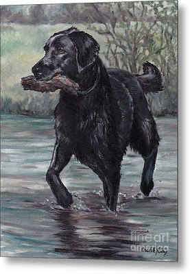 Fetch Metal Print by Charlotte Yealey