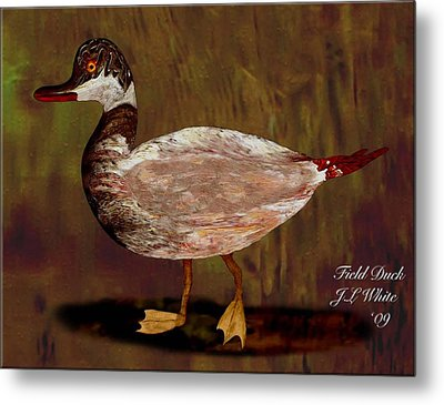 Field Duck Metal Print by Jerry White
