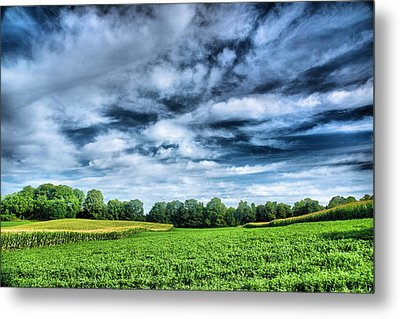 Field Of Dreams One Metal Print by Steven Ainsworth