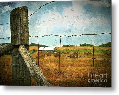 Field Of Freshly Cut Bales Of Hay Metal Print by Sandra Cunningham