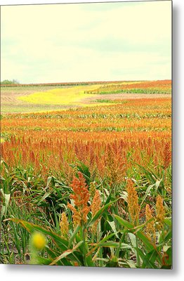 Field Of Gold Metal Print by James Granberry