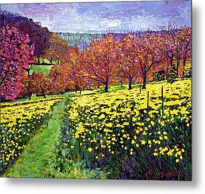 Fields Of Golden Daffodils Metal Print by David Lloyd Glover