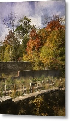 Fiery Autumn Metal Print by Scott Norris