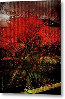 Metal Print featuring the photograph Fiery Dance by Mimulux patricia no No