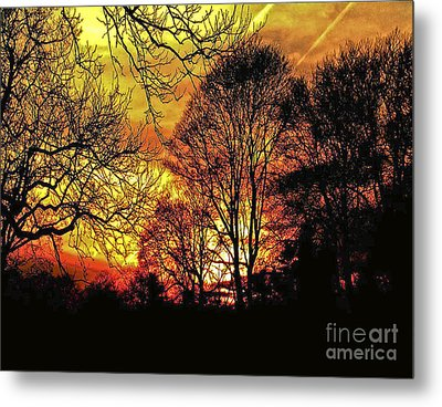 Fiery Red Sunset Metal Print by Carol F Austin