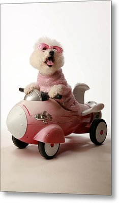 Fifi Is Ready For Take Off In Her Rocket Car Metal Print by Michael Ledray