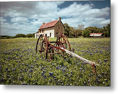 Metal Print featuring the photograph Final Resting Place by Linda Unger