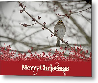 Metal Print featuring the mixed media Finch Christmas by Trish Tritz