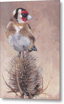 Finch On Thistle Metal Print
