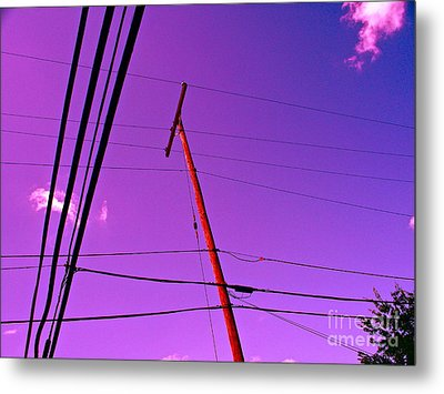 Find Beauty Where You May Metal Print by Chuck Taylor