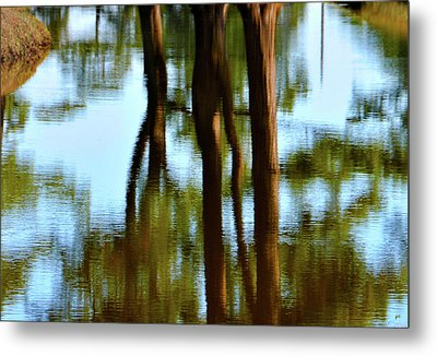 Fine Art Photography - Reflections Metal Print by Gerlinde Keating - Galleria GK Keating Associates Inc