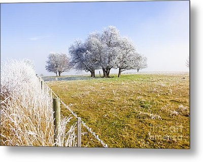 Fine Art Winter Scene Metal Print