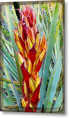 Fire Dance Of The Blue Agave Metal Print by Dan Turner