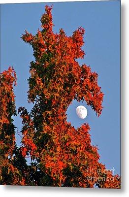 Fire Dragon Tree Eats Moon Metal Print by CML Brown