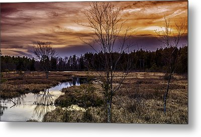 Fire In The Pine Lands Sky Metal Print