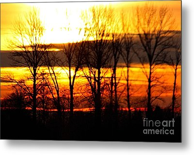 Fire In The Sky Metal Print by Nick Gustafson