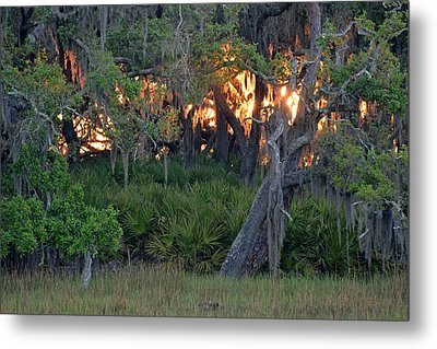 Metal Print featuring the photograph Fire Light Jekyll Island 02 by Bruce Gourley