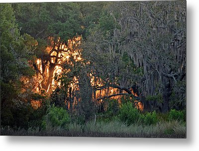 Metal Print featuring the photograph Fire Light Jekyll Island 03 by Bruce Gourley