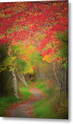 Metal Print featuring the photograph Fire Red Path  by Emmanuel Panagiotakis