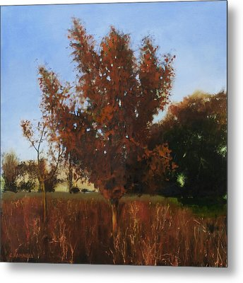 Fire Tree 3 Metal Print by Cap Pannell
