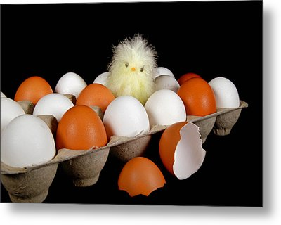 First Born Metal Print by Maria Dryfhout