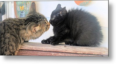 First Encounter Metal Print