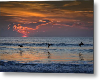 Metal Print featuring the photograph First Flight First Light by Steven Sparks