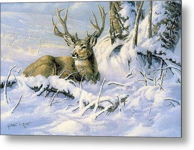 First Snow Metal Print by Kathleen  V  Butts