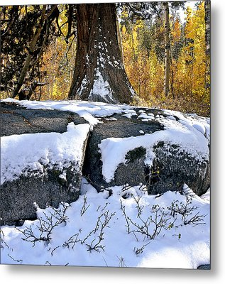 Metal Print featuring the photograph First Snow by Larry Darnell