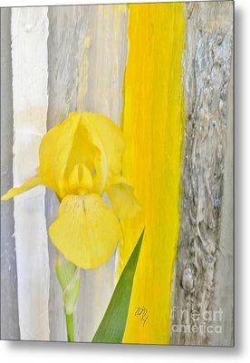 First Yellow Iris Metal Print by Marsha Heiken