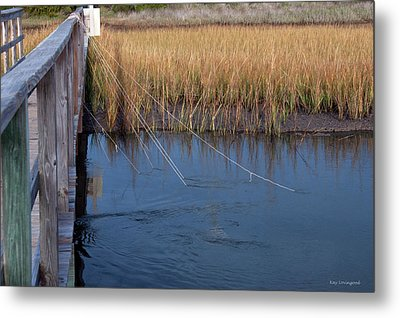 Fishin' Lines Metal Print by Kay Lovingood