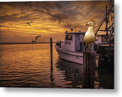 Fishing Boat And Gulls At Sunrise Metal Print by Randall Nyhof