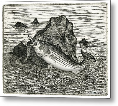 Fishing The Rocks Metal Print by Charles Harden
