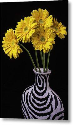 Five Daisies In Striped Vase Metal Print by Garry Gay