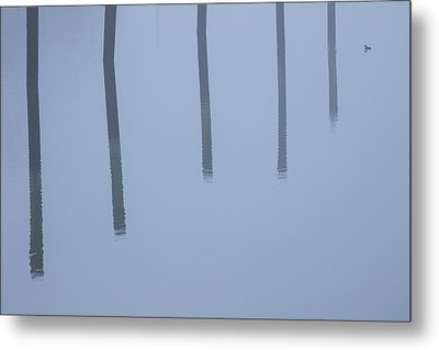 Metal Print featuring the photograph Five Poles And A Duck by Karol Livote