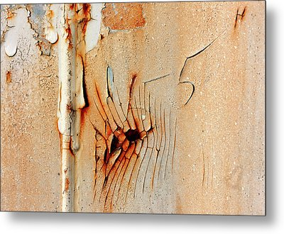 Fiveh Metal Print by Barbara  White