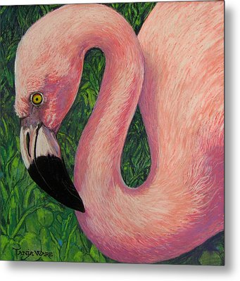 Flamboyant Flamingo Metal Print