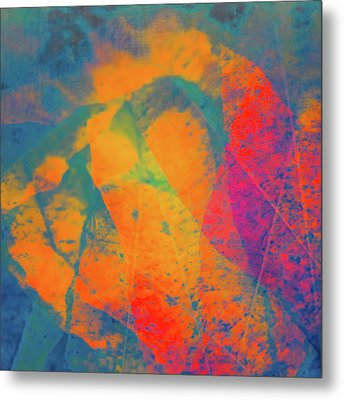 Metal Print featuring the photograph Flaming Foliage 1 by Ari Salmela