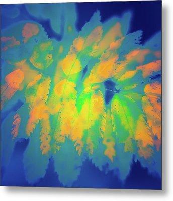 Metal Print featuring the photograph Flaming Foliage 2 by Ari Salmela