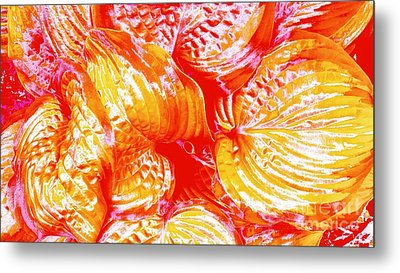Flaming Hosta Metal Print