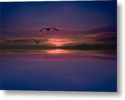 Flaming Sky  Metal Print