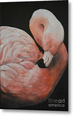 Flamingo Metal Print by Charlotte Yealey