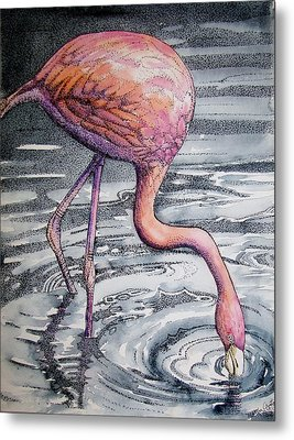 Flamingo Fishing  II Metal Print by Martha Ayotte