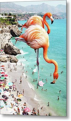 Flamingos On The Beach Metal Print