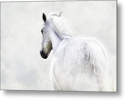 Fleeing Grey Horse Metal Print by Ethiriel  Photography