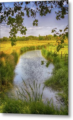 Flemish Creek Metal Print by Wim Lanclus