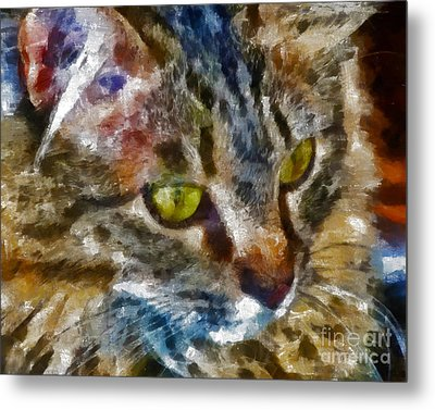 Fletcher Kitty Metal Print